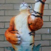 CI21-Carnival-Comp-Gallery-GV017-1