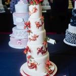CAKE_Allypally_0002