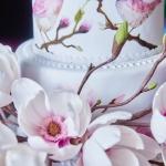 CAKE_Allypally_0048